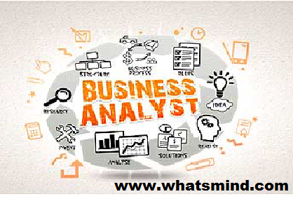 Business Analyst: A Constructive Role in the IT World.