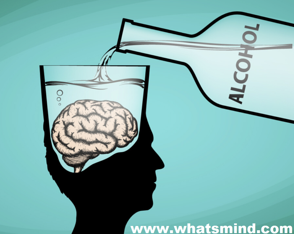 Which part(s) of the brain, when impaired by alcohol, play an important role in memory: